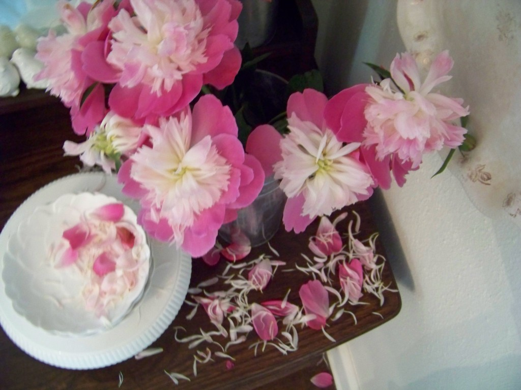 Cottage Fix -peonies from the garden