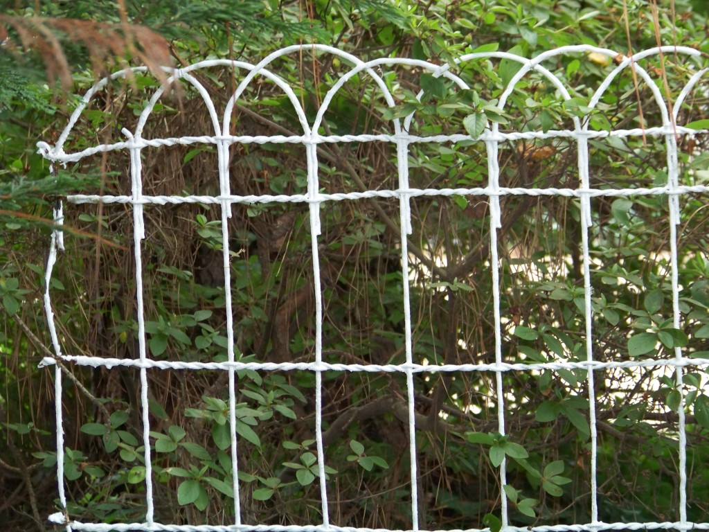 vintage chicken wire