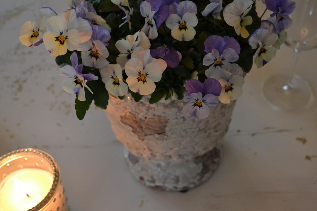 chippy clay pots with purple violas