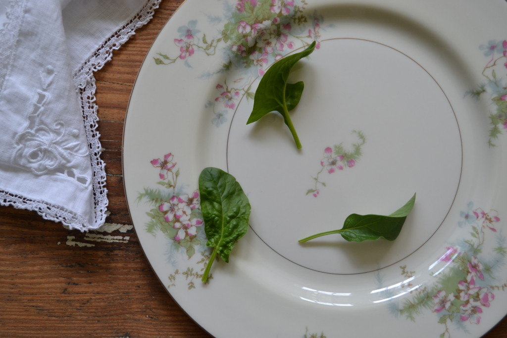 spinach from the garden and cottage china