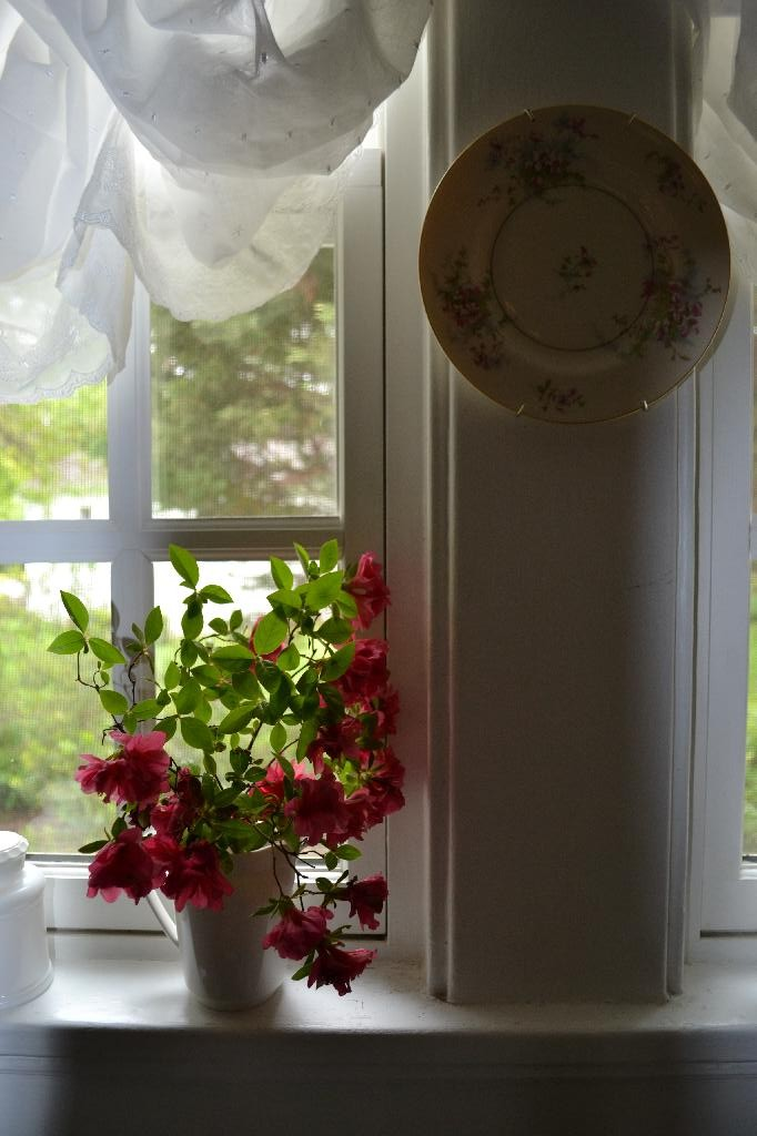 shabby chic window treatment