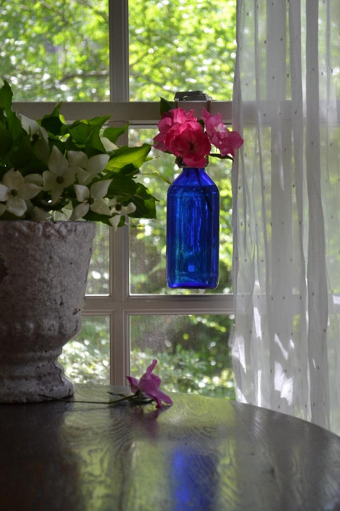 pink roses in a blue bottle