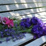 lingering Spring blooms