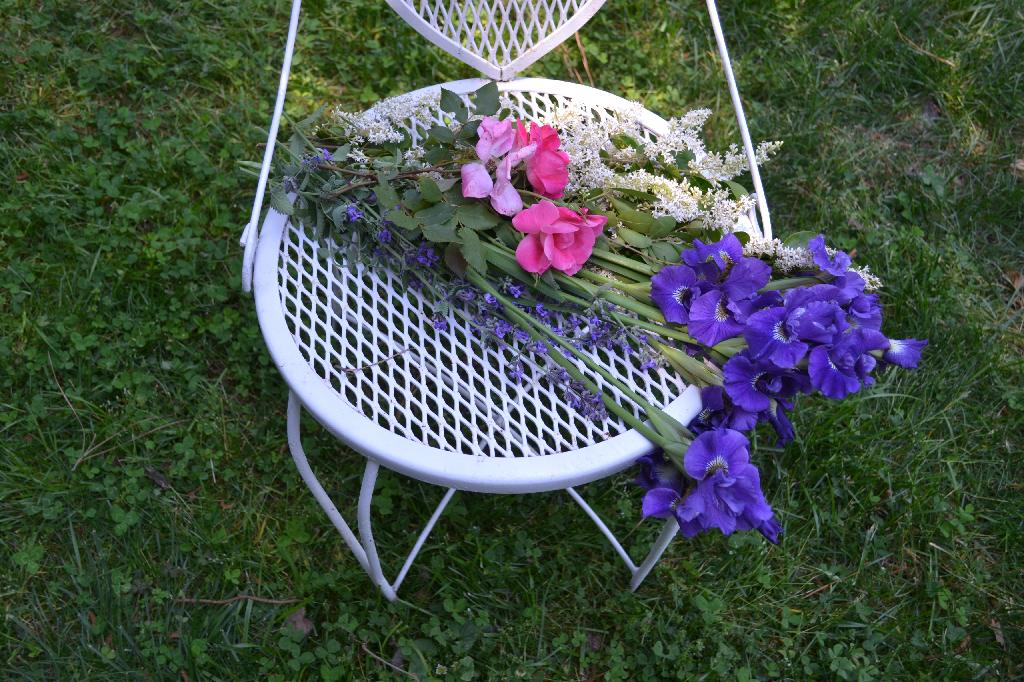 purple irises and pink roses on our vintage chair