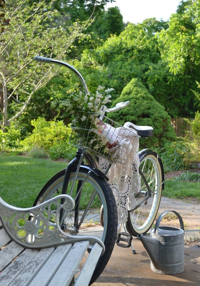 bike in the cottage garden