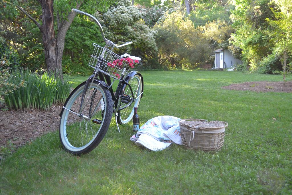 bike and picnic in the garden