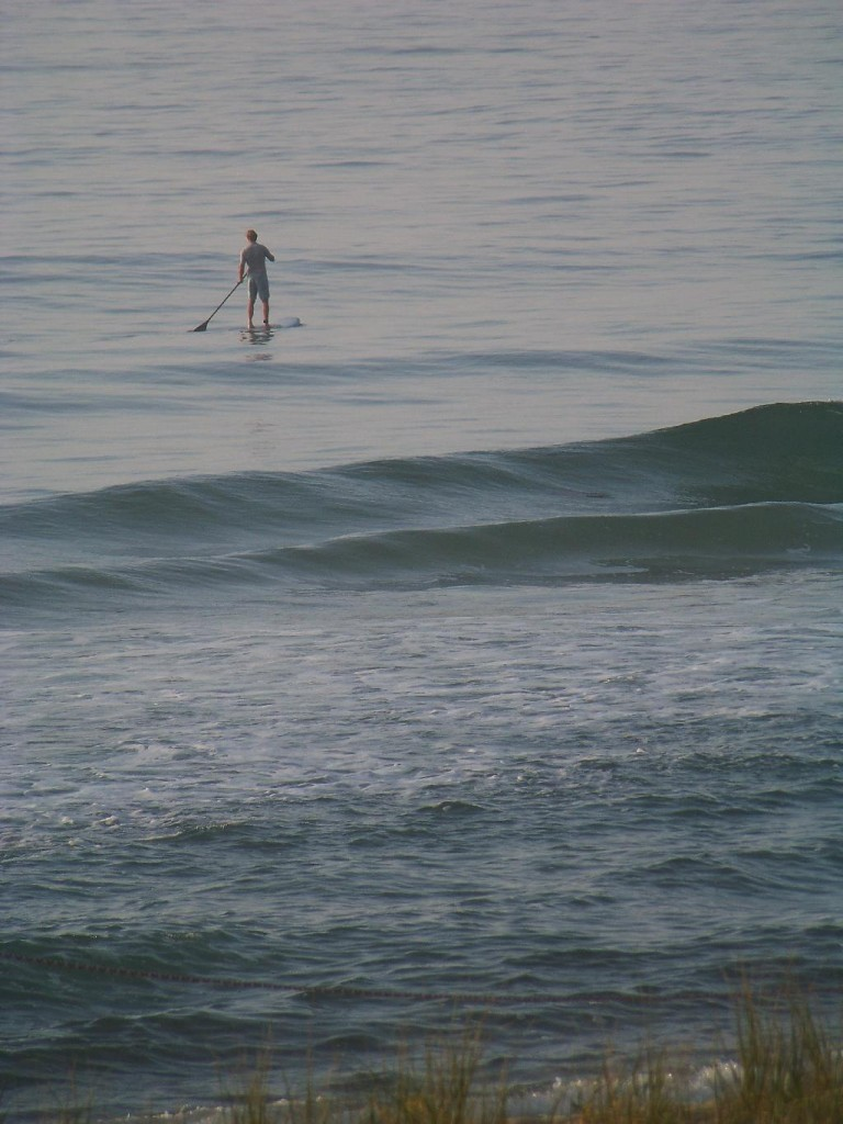 Cottage Fix -paddle boarder in the ocean