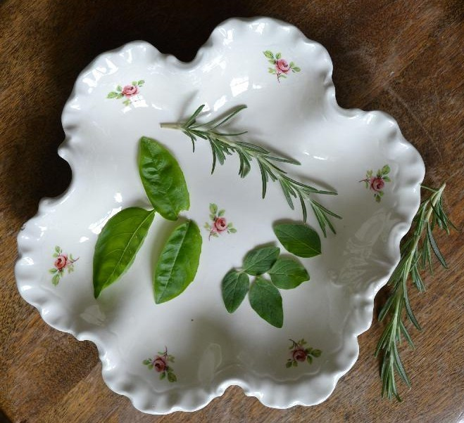 rosemary, basil, and oregano on a vintage floral plate