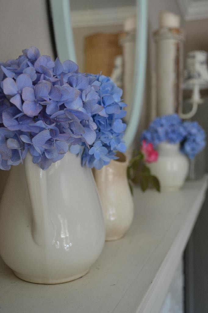 Cottage Fix -beautiful blue hydrangea blooms and ironstone pitchers