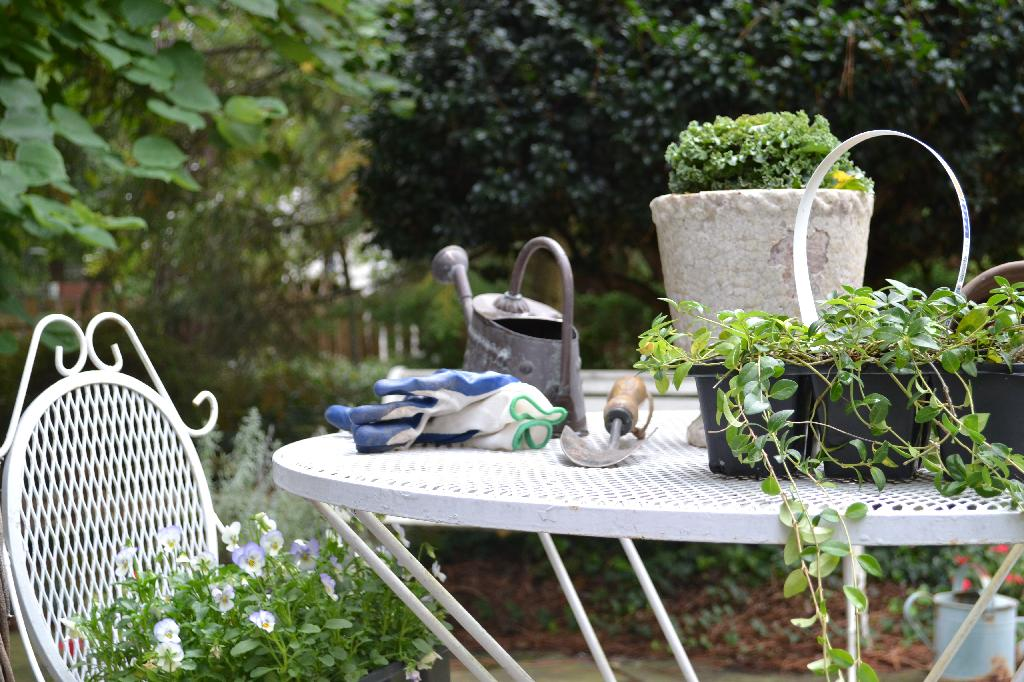 Cottage Fix blog - fall gardening with cabbages and violas