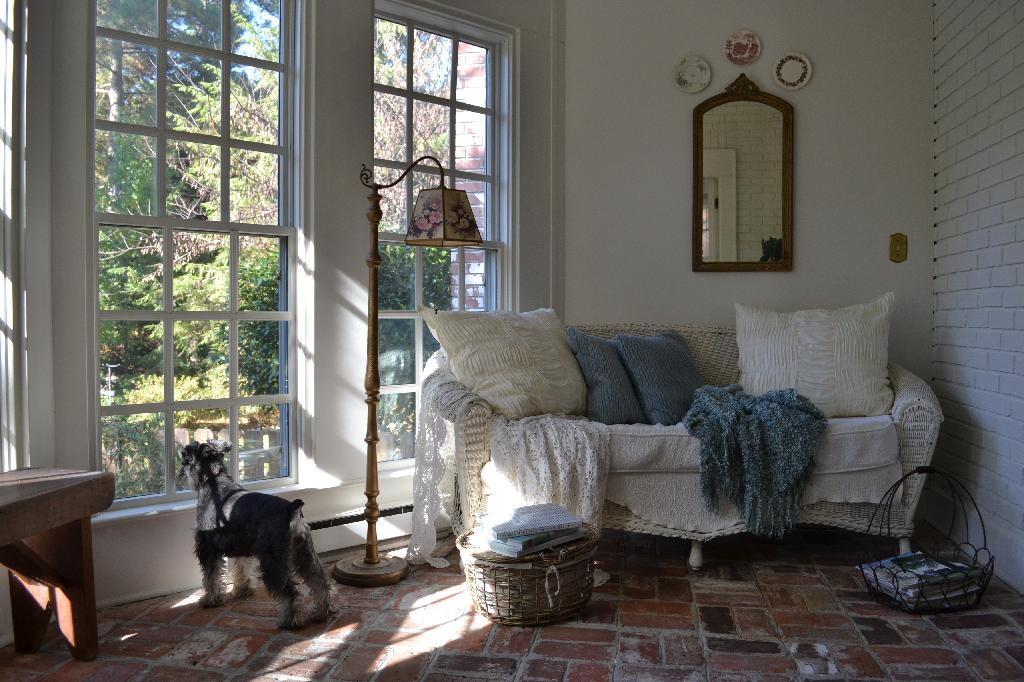 Cottage Fix - sun porch with Miss Paisley hoping to go on a walk