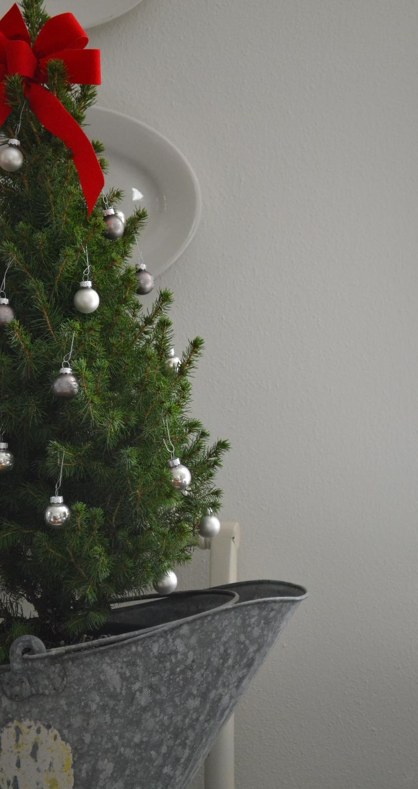 Cottage Fix - cottage Christmas tree adorned with silver ornaments