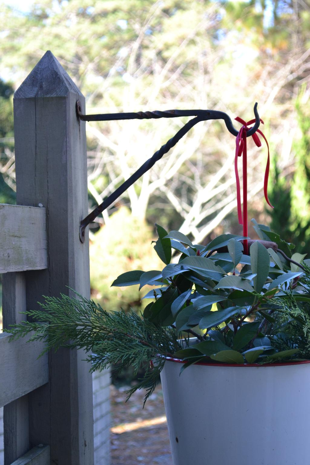 Cottage Fix - an enamel bucket filled with greenery for Christmas