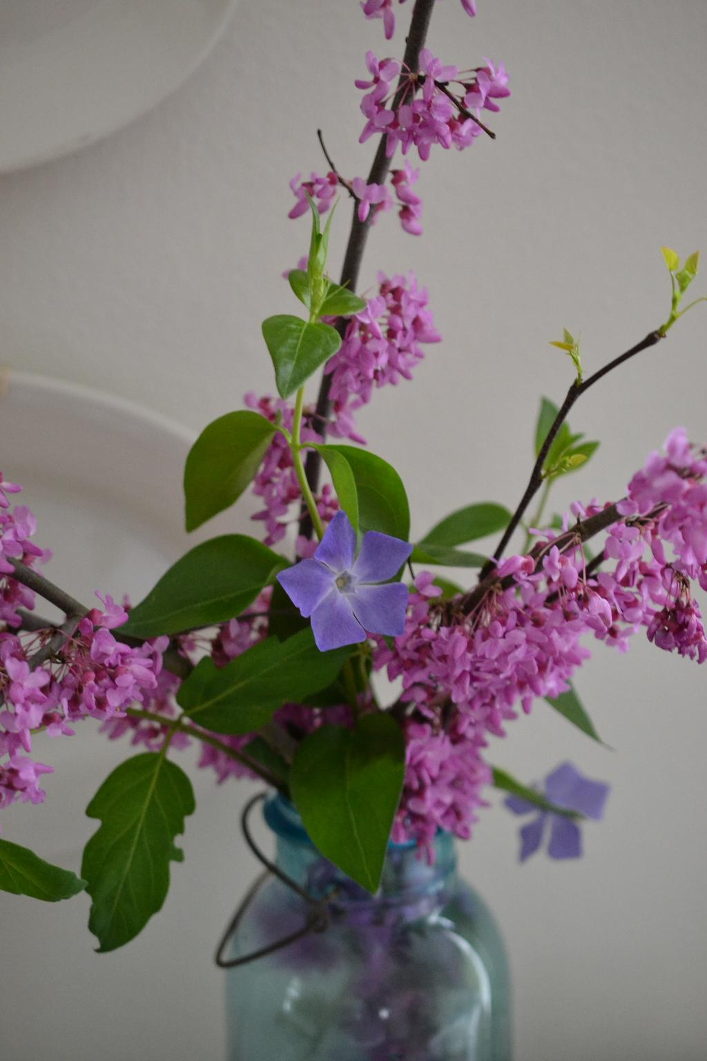 Cottage Fix blog - redbud and vinca
