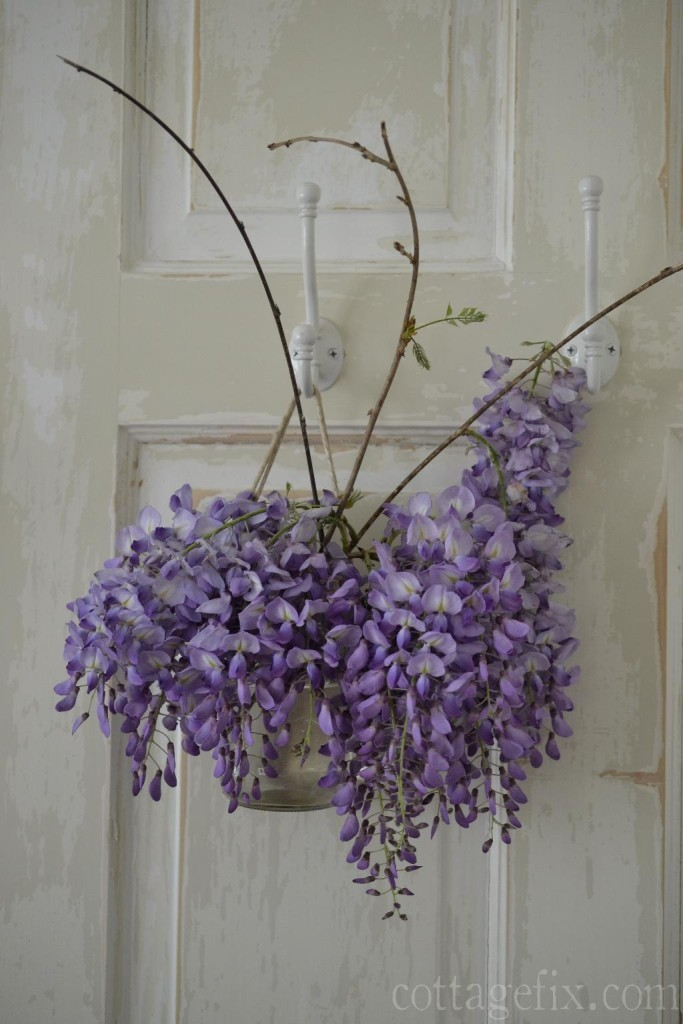 Cottage Fix blog - wisteria on a chippy door