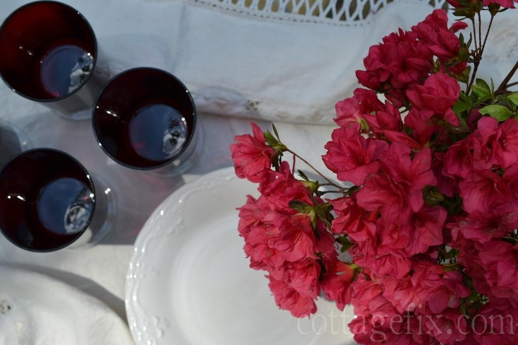 Cottage Fix blog - bright azalea blooms and vintage drinking glasses