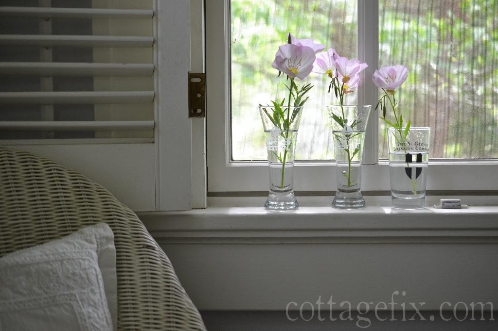 Cottage Fix blog - primrose in tiny glasses