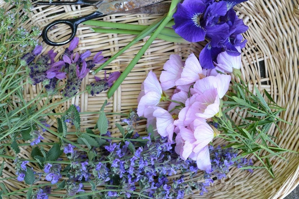 Cottage Fix blog - flowers and herbs in a basket