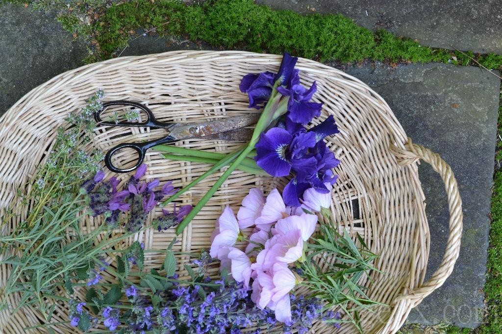 Cottage Fix blog - blooms from the garden in a basket
