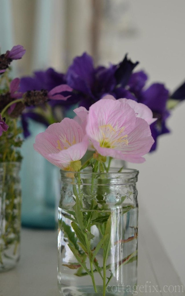 Cottage Fix blog - garden blooms in a jar