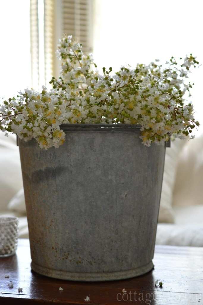 Cottage Fix blog - galvanized bucket and white crepe myrtle blooms