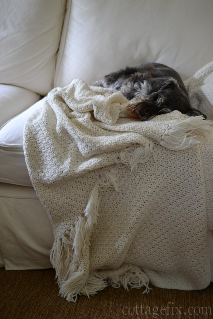 Cottage Fix blog - Paisley napping on the sofa