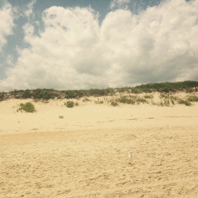 Cottage Fix blog - Corolla beach in the Outer Banks