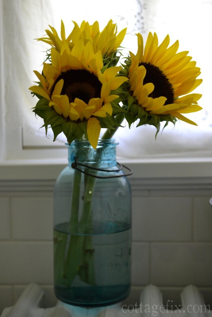 Cottage Fix blog - sunny sunflowers in a blue vintage canning jar