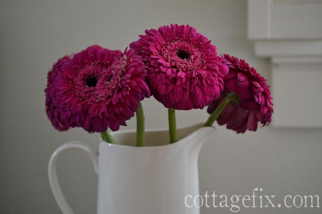 Cottage Fix blog - Friday Flower Power