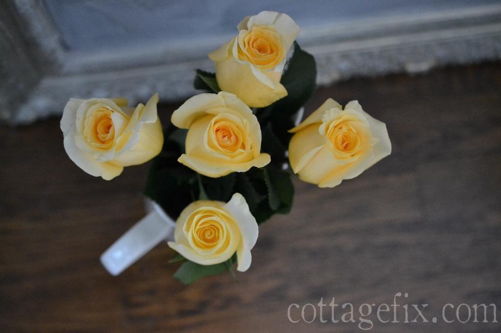 Cottage Fix blog - peach roses