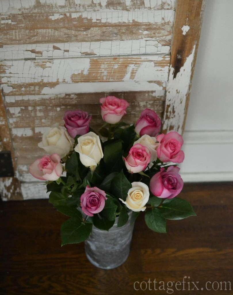 Cottage Fix blog - purple and pink roses