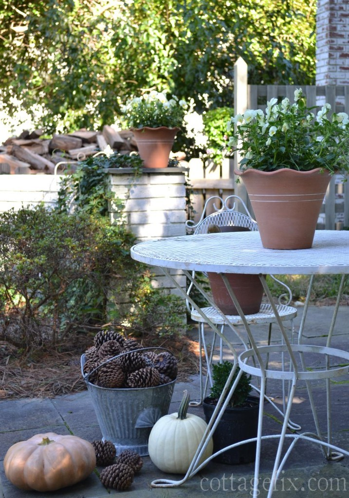 Cottage Fix blog - fall planting and pumpkins