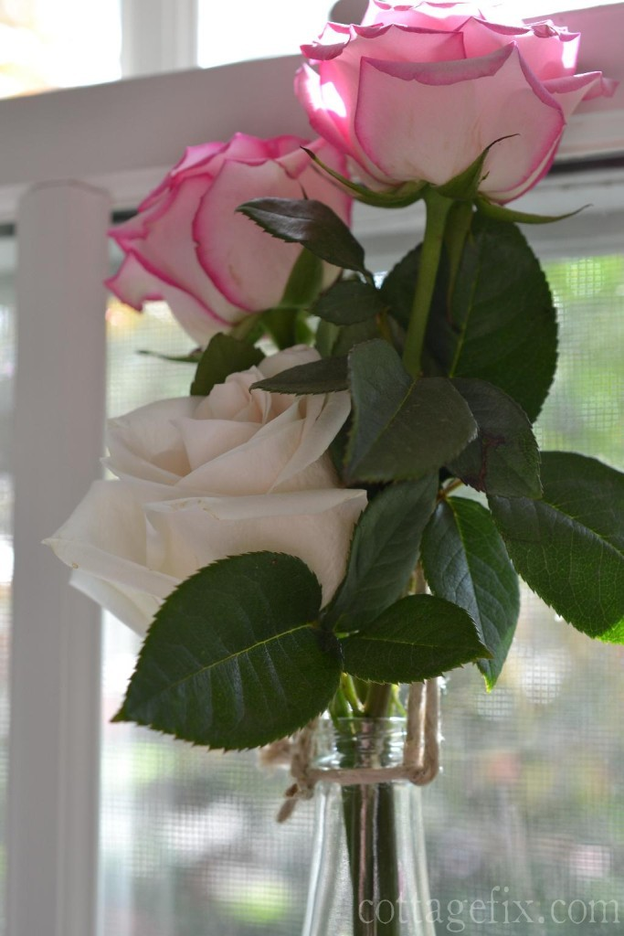 Cottage Fix blog - roses window art DIY