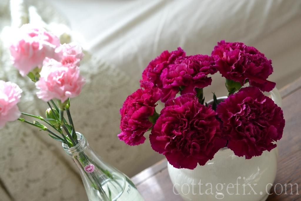 Cottage Fix blog - pink and fuchsia carnations