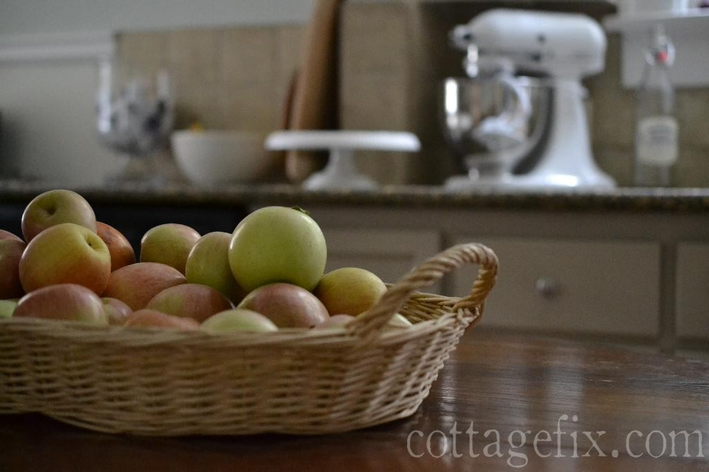 Cottage Fix blog - Fuji apples fresh picked on Carter Mountain