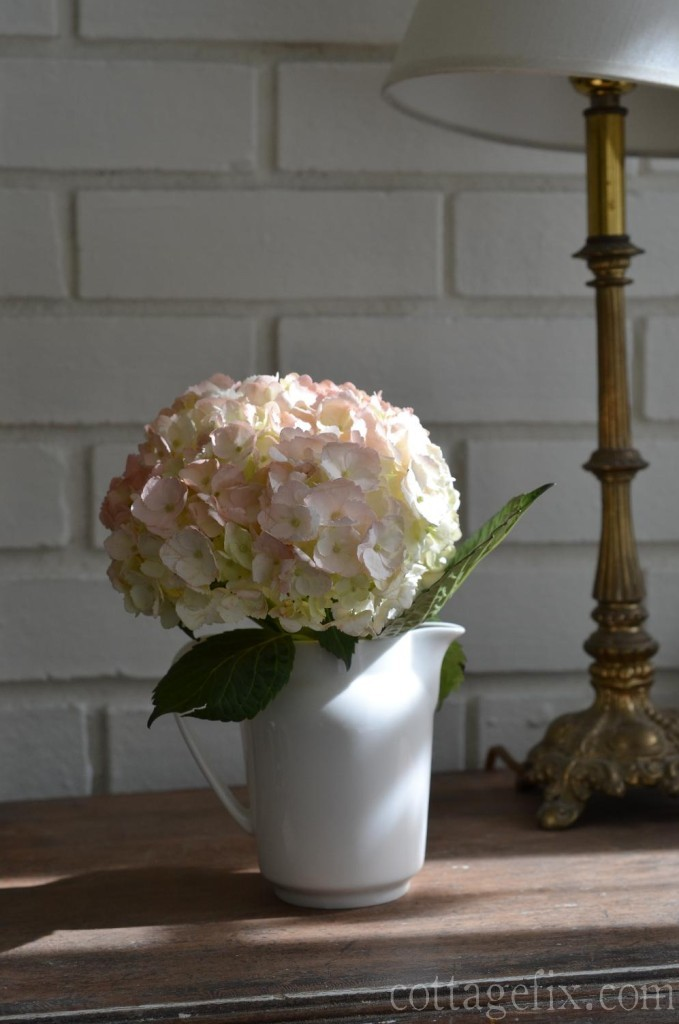 Cottage Fix blog - pale pink hydrangea bloom