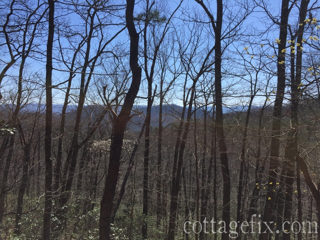 Cottage fix blog - mountain view hiking at Douthat State Park