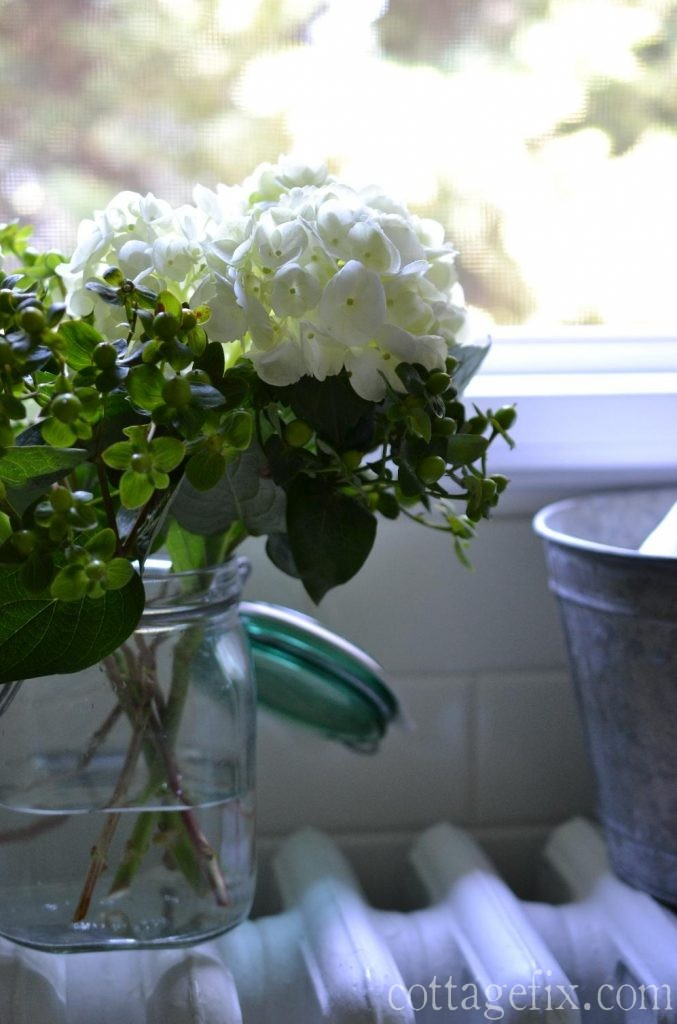 Cottage Fix blog - hydrangea and hypericum