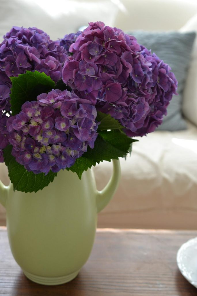Cottage Fix blog - purple hydrangeas