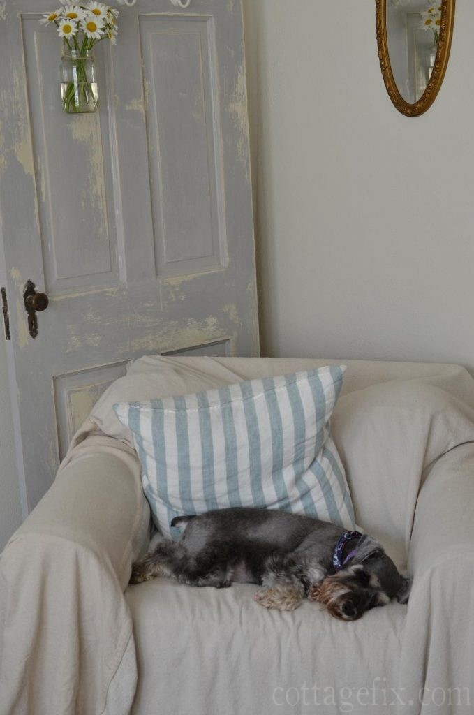Cottage Fix blog - Miss Paisley sleeping on the drop cloth chair cover