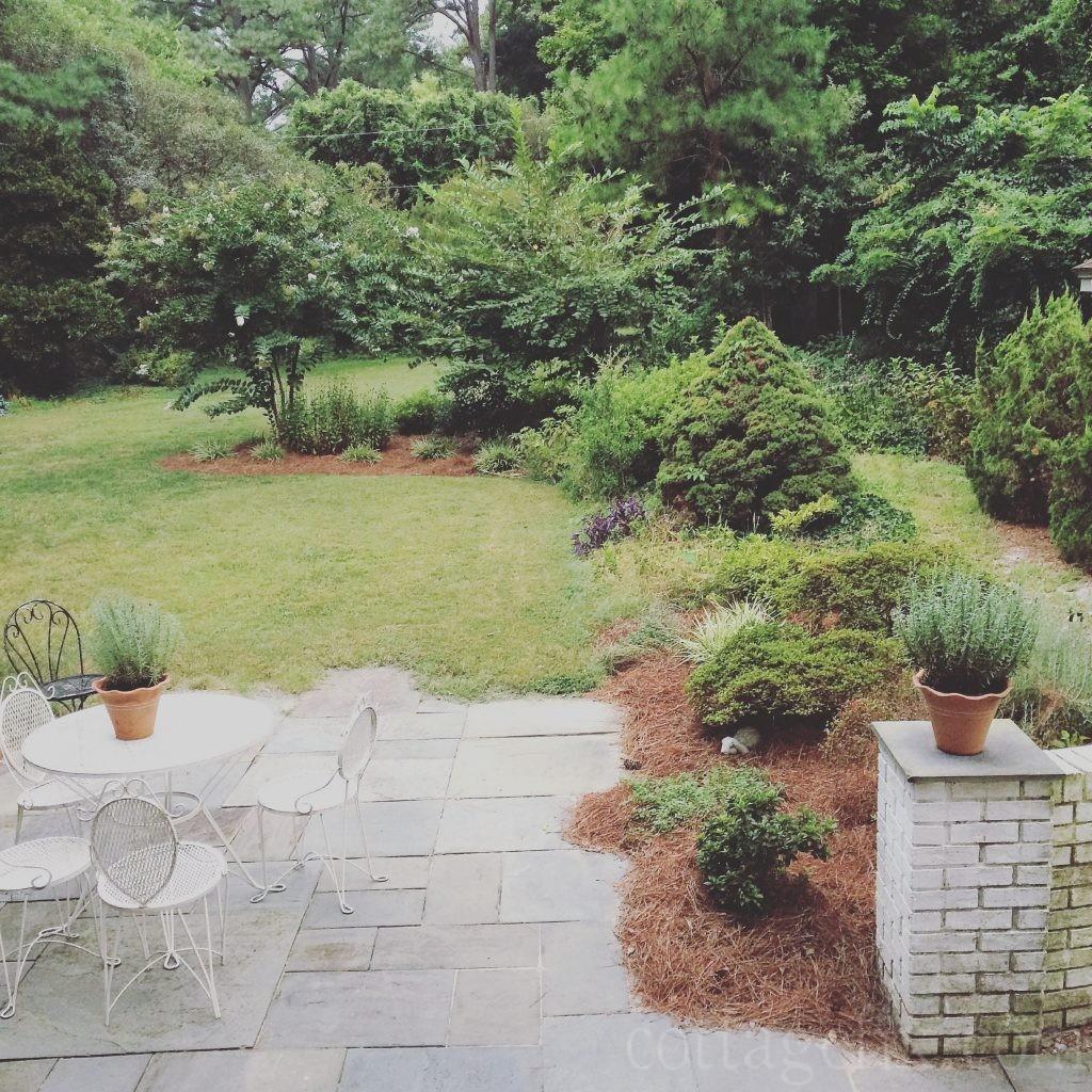 Cottage Fix blog - back garden in late summer