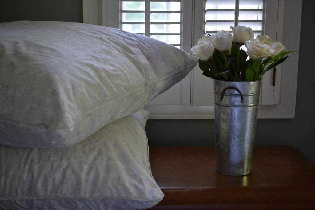 Cottage Fix blog - Louella euro shams and white roses