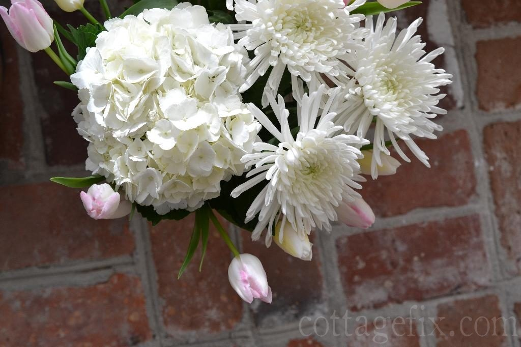 Cottage Fix blog - pink and white blooms