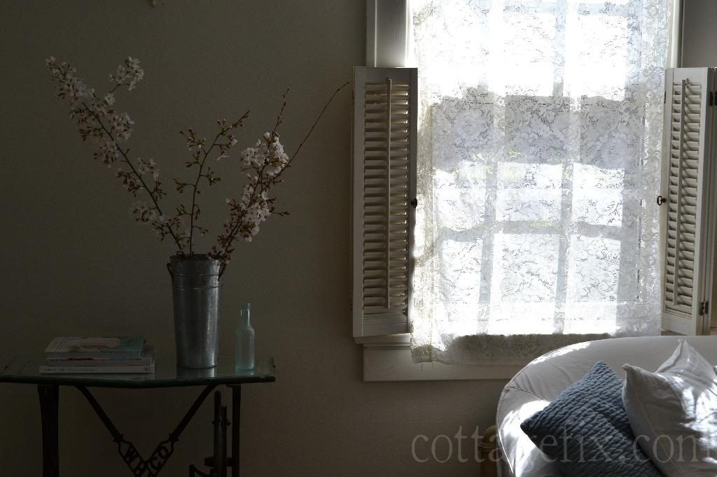 Cottage Fix blog - cherry blossoms and lace