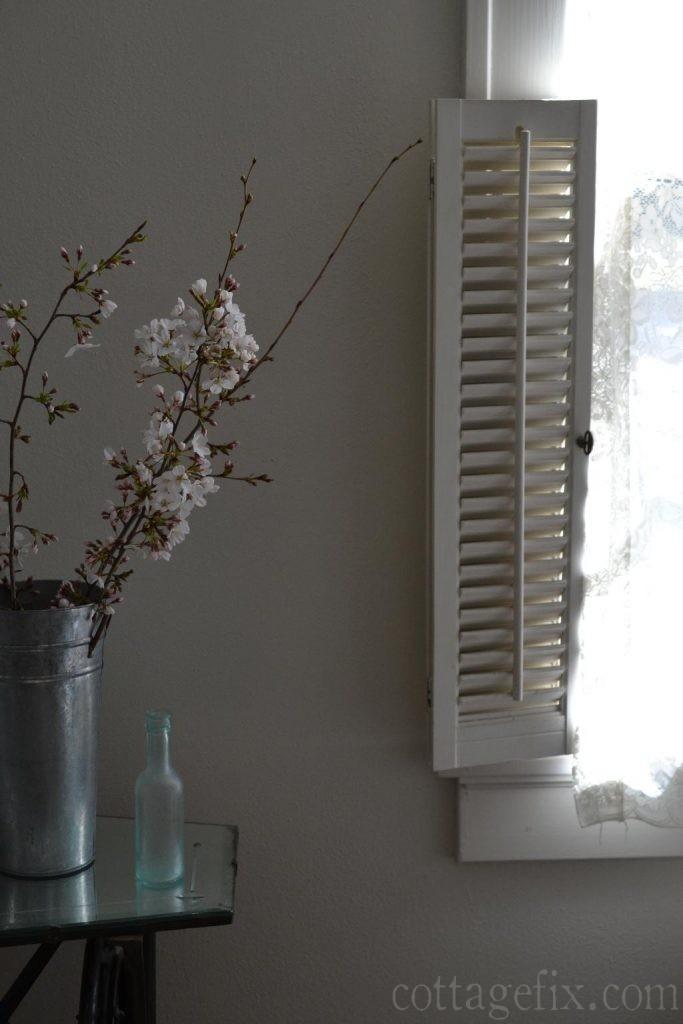 Cottage Fix blog - cherry blossoms