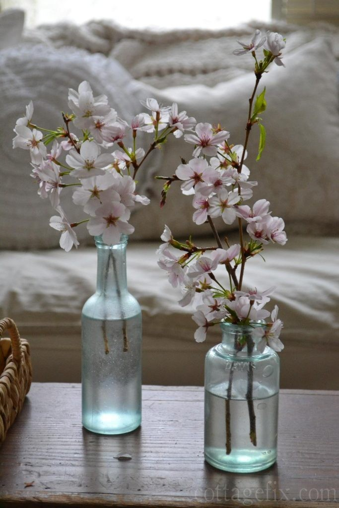 Cottage Fix blog - cherry blossom in vintage blue glass bottles