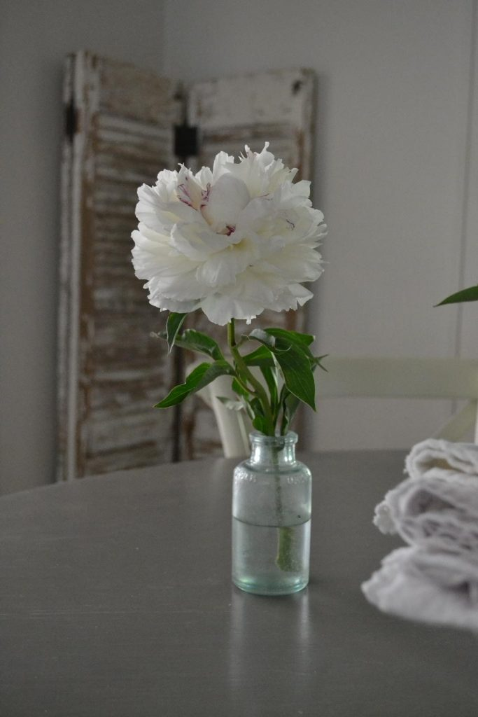 Cottage Fix blog - white peony