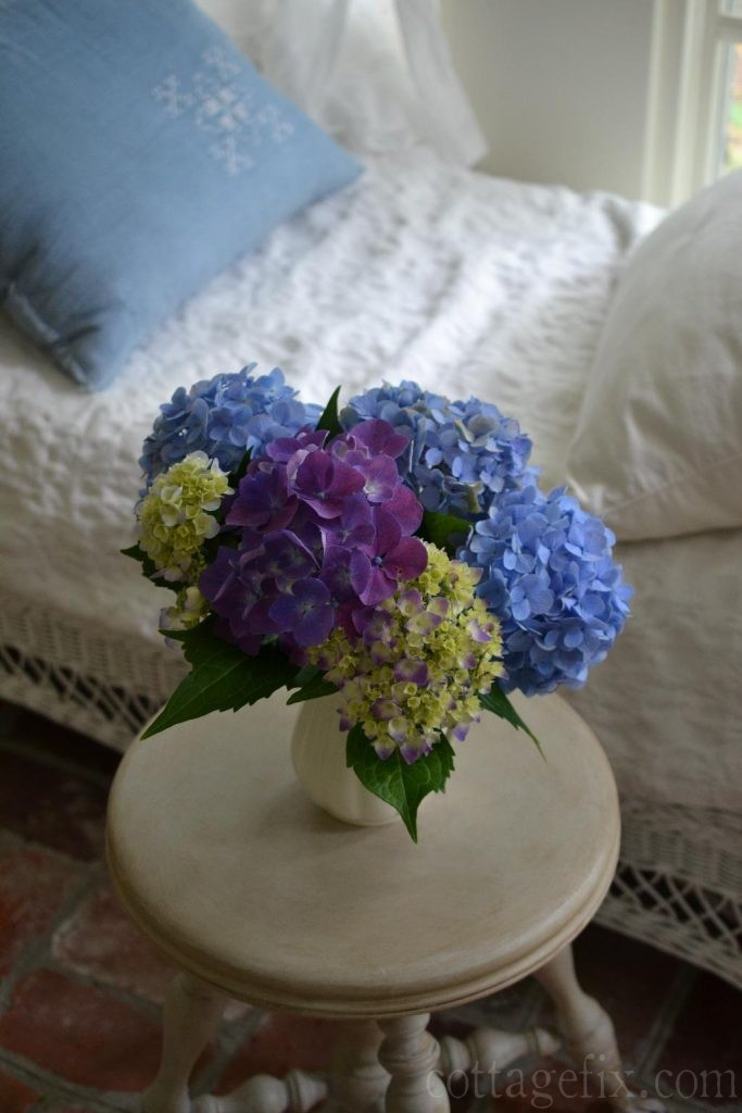 Cottage Fix blog - garden hydrangeas and changing their color