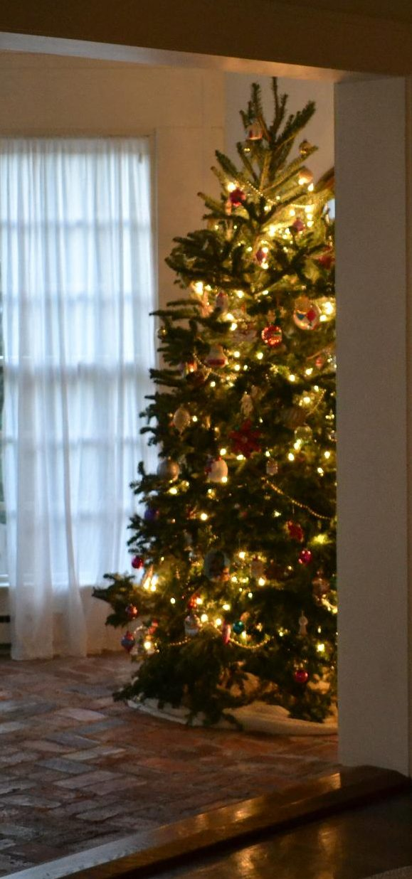Cottage Fix blog - Christmas tree on our sun porch