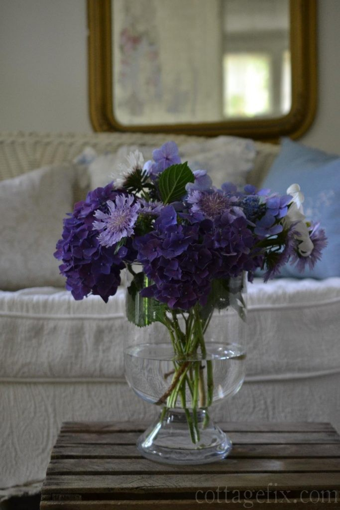 Cottage Fix blog - Friday flowers from the garden